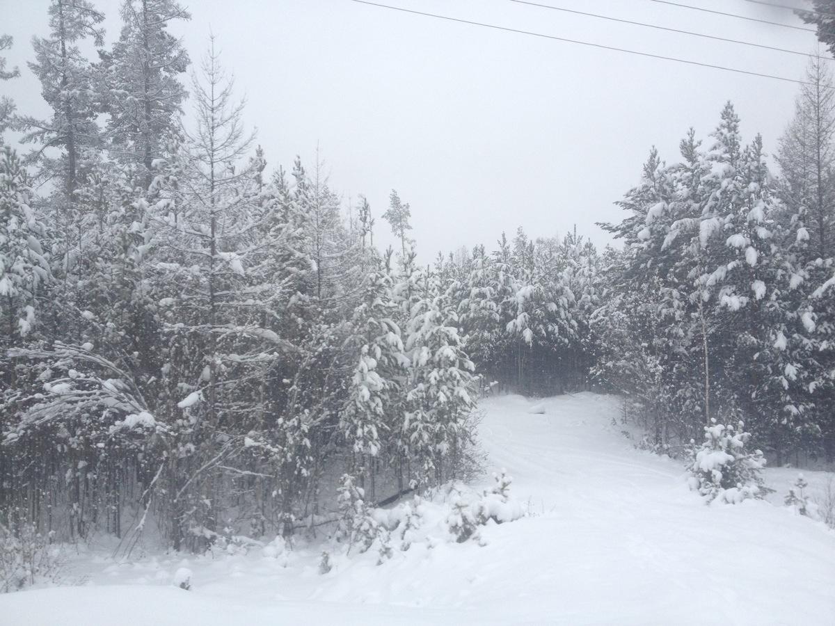 Typisch landschap aan de BAM route