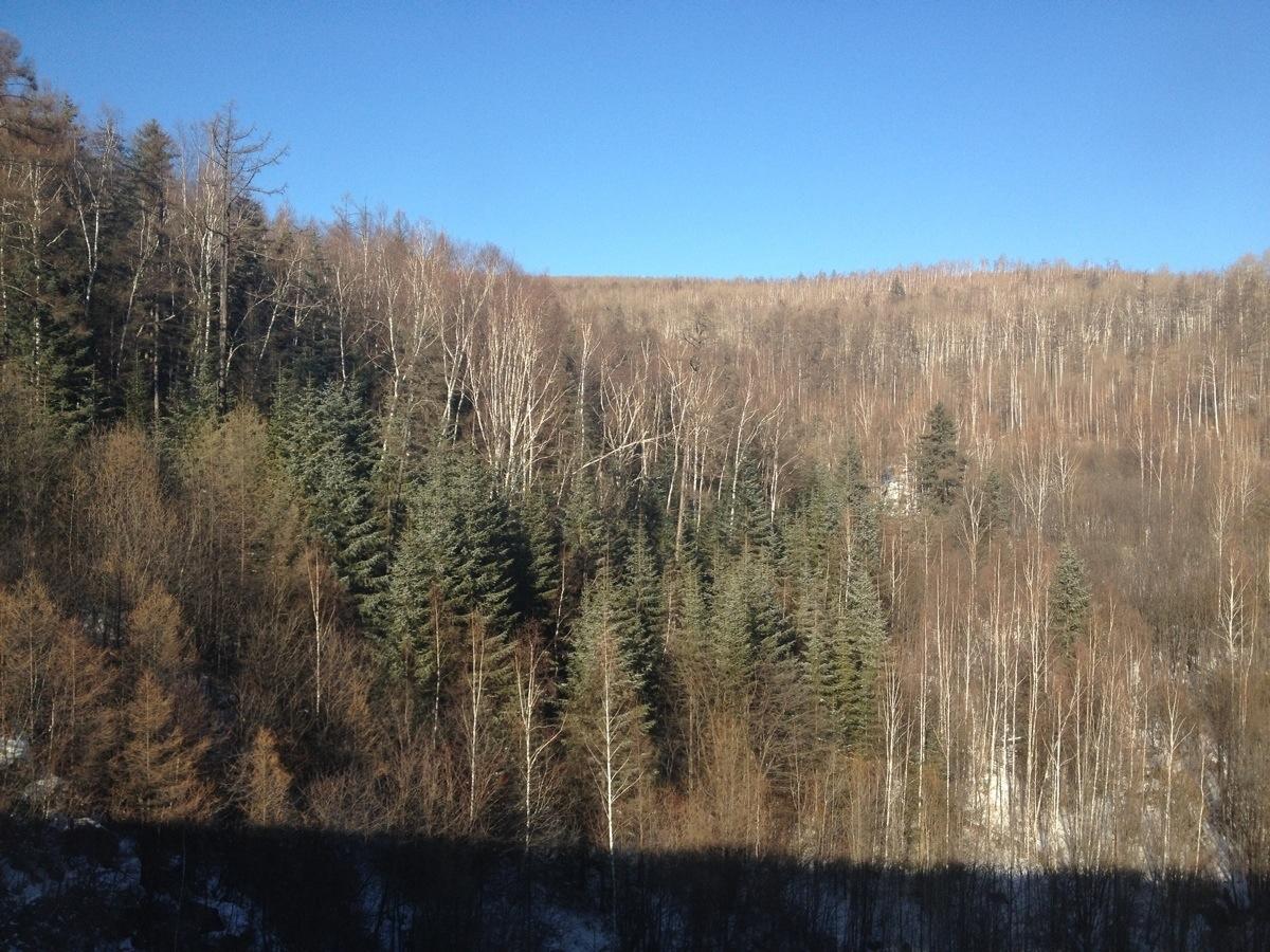 Border Siberia Russian Far East